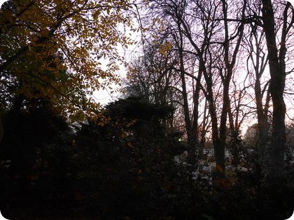ドイツ 冬時間