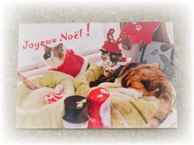 12月 クリスマスプレゼント~♪