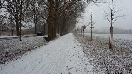 1月24日 雪だよ~♪