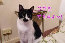 1月 金縛り(築140年のアパートメント)~♪