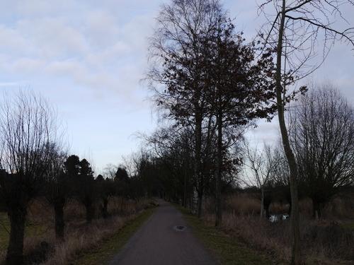 2月 お散歩~♪
