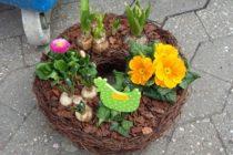 3月 ドイツ 花 春
