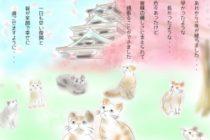 4月14日 日本 熊本震災 1年