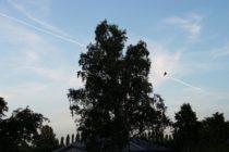 6月 ドイツ 21時過ぎの空