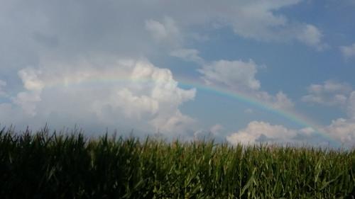 6月 ドイツ 虹