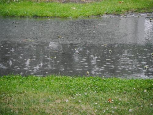 6月 ドイツ 豪雨