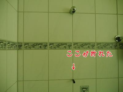 2017.7 ドイツ シャワー掛け