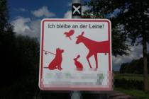 2017. ドイツ 犬 風景