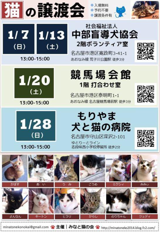 2017 日本 その他