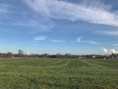 2019 ドイツ 風景